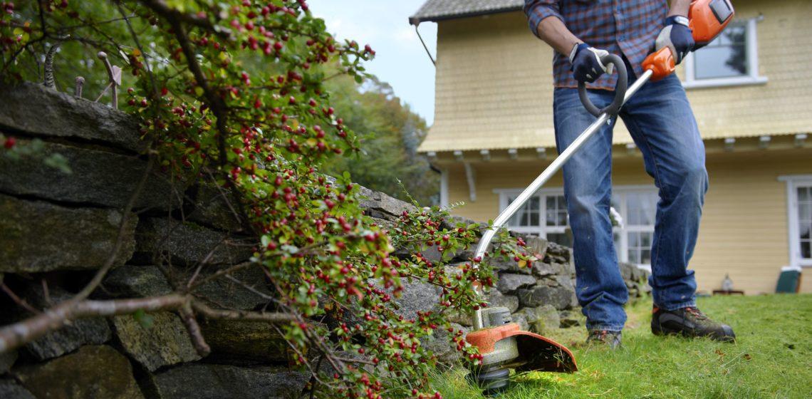 Триммер для работы в саду