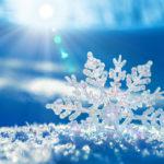 Применение триммера для уборки снега