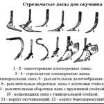 Виды стрельчатых лап для окучника